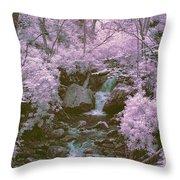 Infrared Mountain Stream Throw Pillow