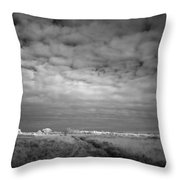 Infrared Picture Of The Nature Area Dwingelderveld In Netherlands Throw Pillow by Ronald Jansen