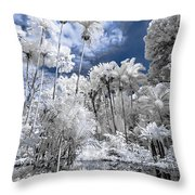 Infrared Pond And Reflections 2 Throw Pillow