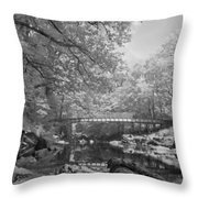 Infrared River Throw Pillow