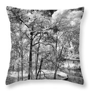 Infrared Stream Throw Pillow