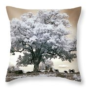 Infrared Tree On A Hill In Gettysburg Throw Pillow by Paul W Faust -  Impressions of Light