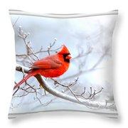 Ing 2559-16 Throw Pillow