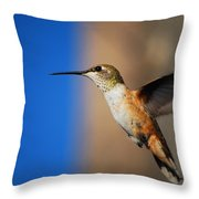 #inlovewithlove Throw Pillow