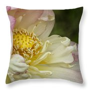 Inner Beauty Of The Lotus Throw Pillow