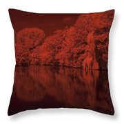Inner City Lake Throw Pillow