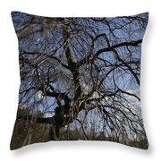 Inner Energy In Full Blossom 1 Throw Pillow