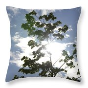 Inner Energy In Full Blossom 3 Throw Pillow