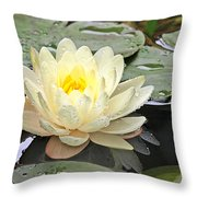 Inner Glow - White Water Lily Throw Pillow