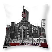 Inner Harbor Throw Pillow
