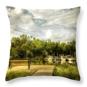 Inner Harbor View Throw Pillow