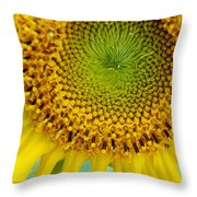 Inner Peace Forms Within This Sweet Yellow Sunflower Throw Pillow