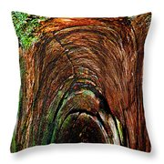 Inner Sanctum II Throw Pillow