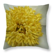 Inner Section Of A White Peony Throw Pillow