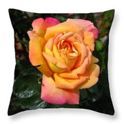 Inner Sun Throw Pillow
