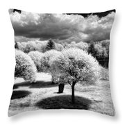 Innisfree Garden Throw Pillow