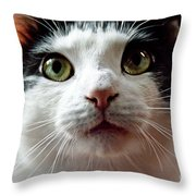 Innocense Throw Pillow