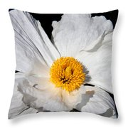 Innocent Krinkle - White Peony By Diana Sainz Throw Pillow