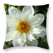 Innocent White Throw Pillow