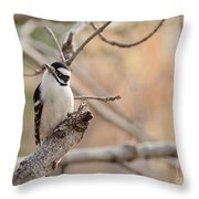 Inquisitive Woodpecker Throw Pillow