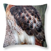 Inquisitve Red Tailed Male Hawk Throw Pillow