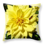Insect On A Dahlia Throw Pillow