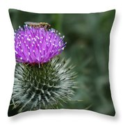 Insect On A Thistle Throw Pillow