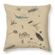 Insects C1825 Throw Pillow
