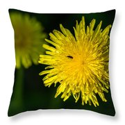 Insects On A Dandelion Flower - Featured 3 Throw Pillow