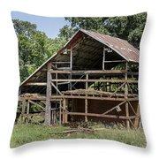 Inside A Barn Throw Pillow