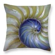 Inside A Nautilus Shell Throw Pillow