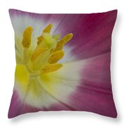 Inside A Pink Tulip Throw Pillow
