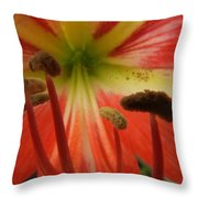 Inside Amaryllis Throw Pillow