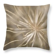 Inside Throw Pillow by Anne Gilbert