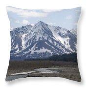 Inside Denali National Park 4 Throw Pillow