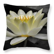 Inside Glow Throw Pillow