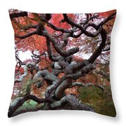 Inside The Japanese Maple Throw Pillow