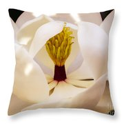 Inside The Magnolia Throw Pillow