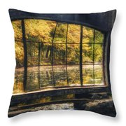 Inside The Old Spring House Throw Pillow