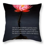 Inspirational - Reflection - Confucius Throw Pillow by Mike Savad