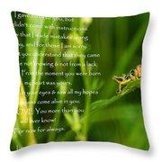 Inspirational Wall Art 1 Throw Pillow