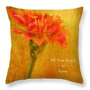 Inspirational Words All You Need Is Love Throw Pillow