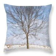 Inspirations 3 Throw Pillow by Sara  Raber
