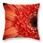 Inspired Essence Gerber Daisy Throw Pillow