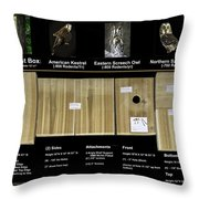 Instructions Cedar Nest Box For Kestrel And Owl Throw Pillow