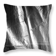 Insult To Injury 2 Bw Throw Pillow