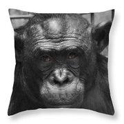 Intelligent Eyes Throw Pillow
