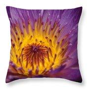 Intense...   # Throw Pillow