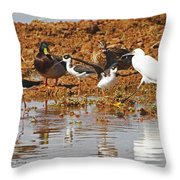 Inter-species Meeting Place Throw Pillow