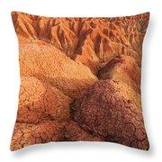 Interesting Desert Landscape Throw Pillow